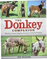 donkey_companion