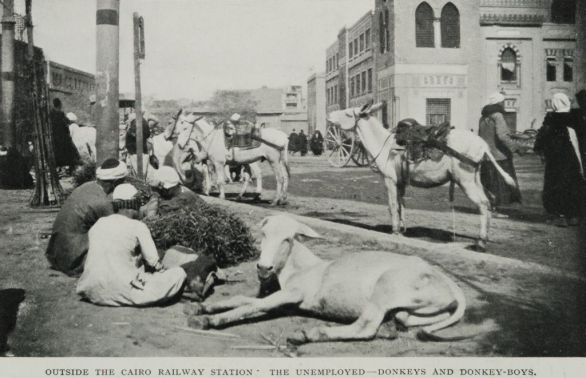 Outside_the_Cairo_Railway_Station_The_Unemployed--Donkeys_and_Donkey-Boys._(1911)_-_TIMEA