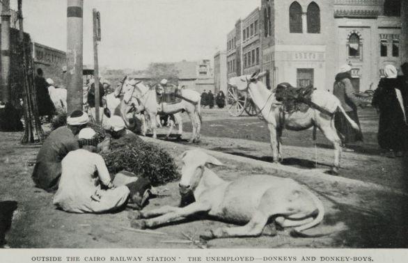 Outside_the_Cairo_Railway_Station_The_Unemployed--Donkeys_and_Donkey-Boys._(1911)_-_TIMEA